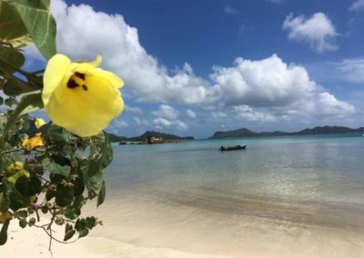 24_Seychelles_Fantozzi
