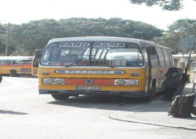 DSCN3353