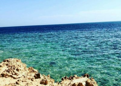 SHARM_EL_SHEIKH_barbarina